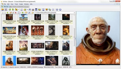 12 Free Alternative Image and Photo Organizer for